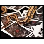 Bicycle Venom Deck Playing Cards