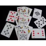 Bicycle Truth Garden 04 White Deck Playing Cards