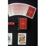 Bee RTJC Watermelon Red Deck Playing Cards