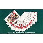 Bicycle Hesslers Enhanced Cartes Deck Playing Cards