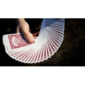 Bicycle New Fan Back Red Dan & Dave Playing Cards